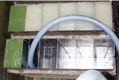水かき缶蒸し製法3