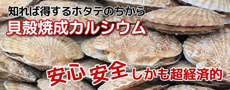 貝殻焼成カルシウム