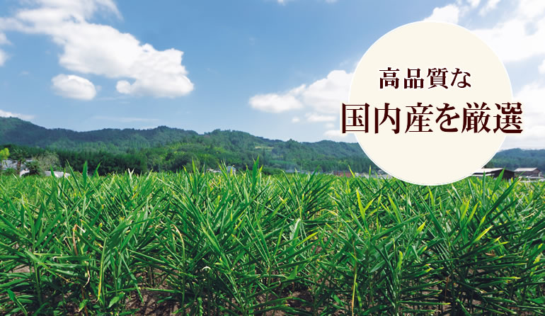 高品質な栃木県産生姜