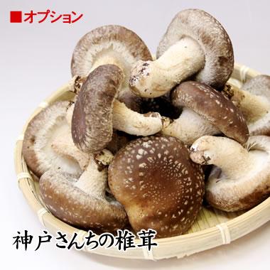 神戸さんちの椎茸