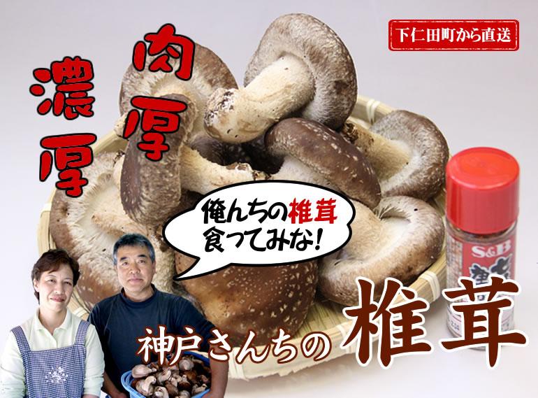 下仁田産椎茸